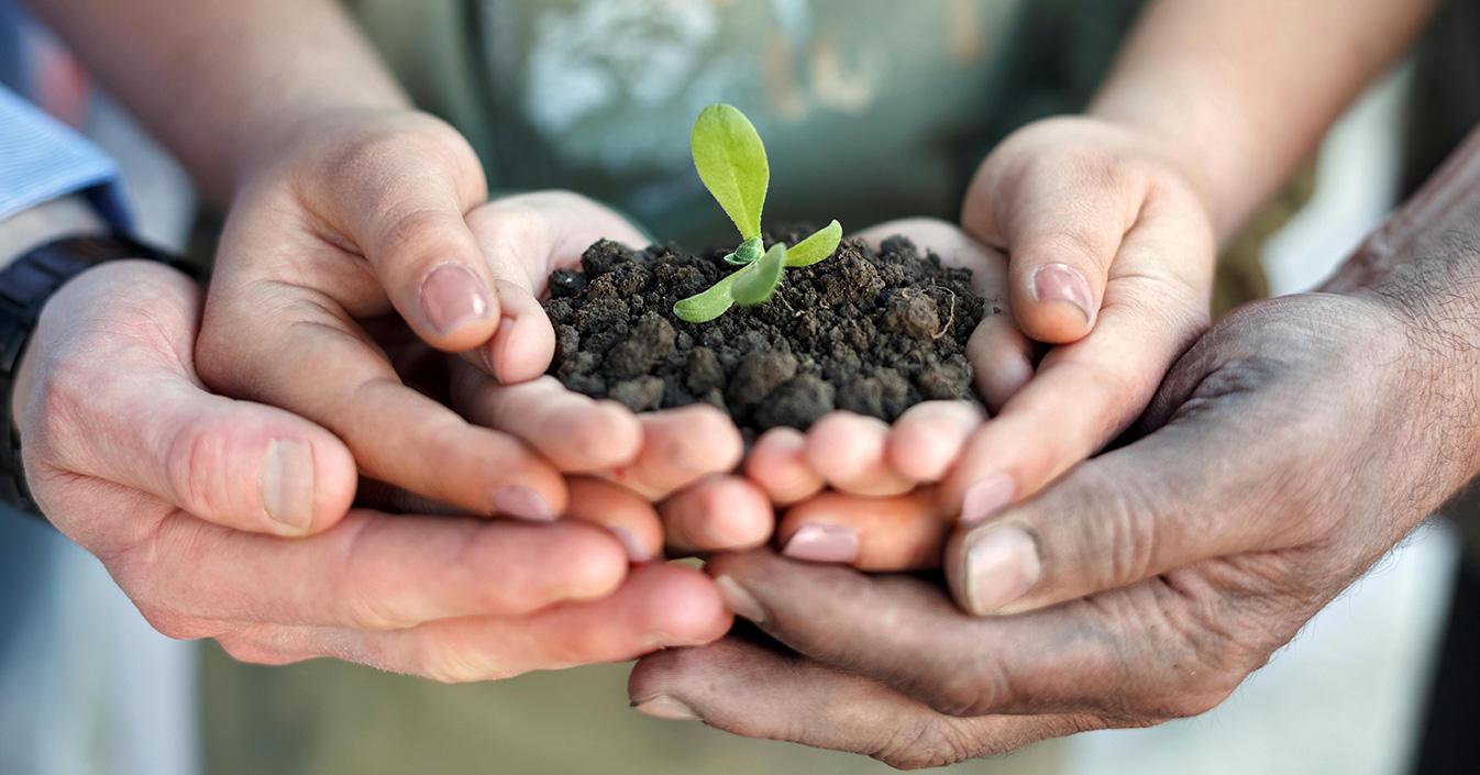 Agricoltura Sociale A Che Punto Siamo Jobmetoo Blog